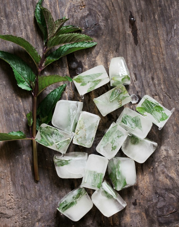 Simple tips for freezing fresh herbs